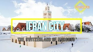 Ifran The Switzerland of Morocco-Morocco Travel Guide