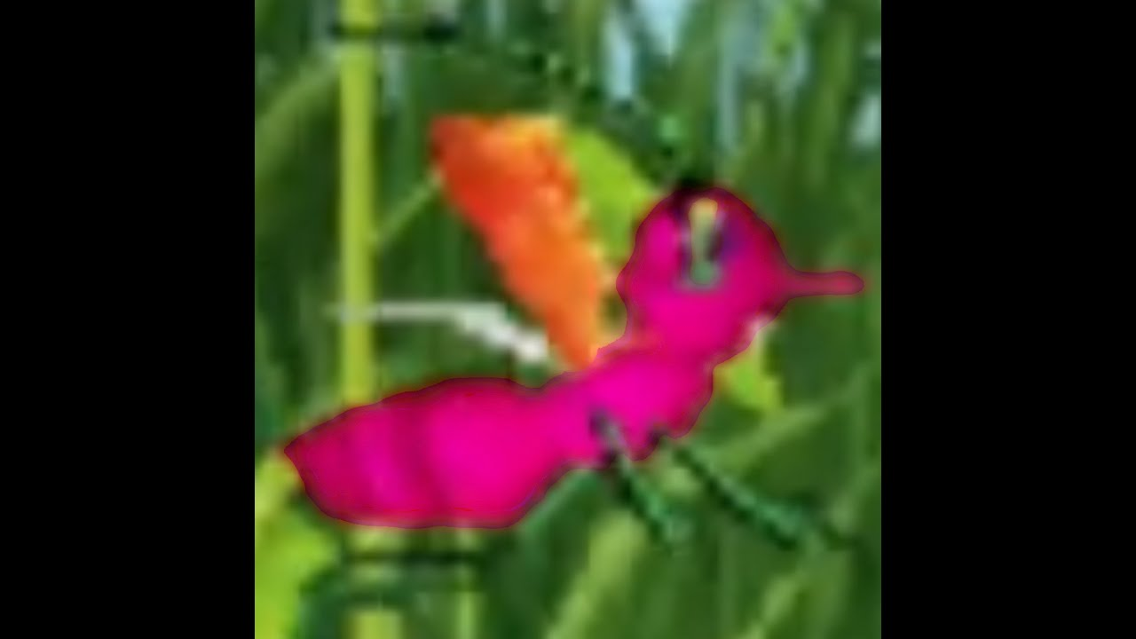 Download Miss Spider's The Prince The Princess And The Bee Intro DVD Trailer