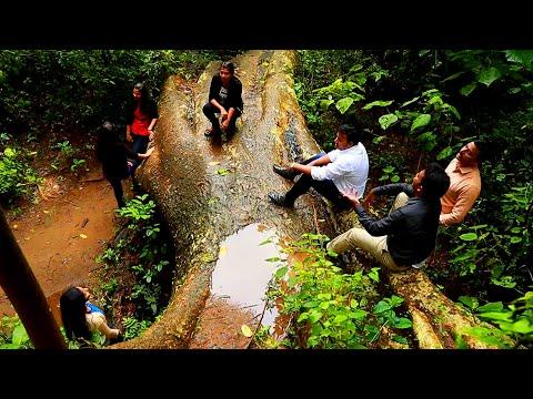 Beautiful award winning  English Nature Song - 'Natures Love' by  Anto Thomas