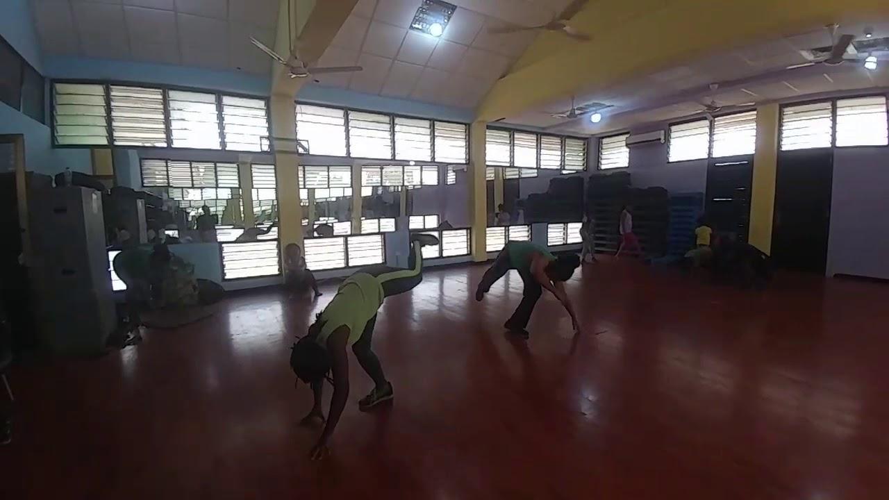 Abibifahodie Capoeira Feb 15