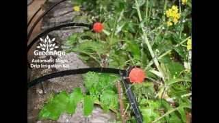 Automatic Micro Drip Irrigation by GreenAge