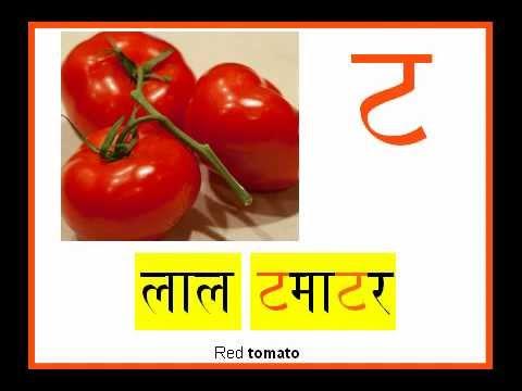 hindi alphabets video free download