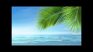 Chris Rea 💥  On the Beach (Lyrics)