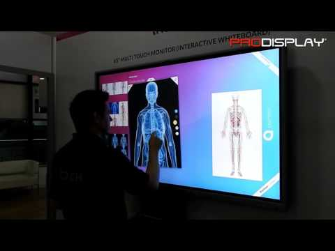 65 Inch Multi Touch Screen (Interactive Whiteboard)
