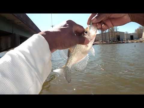 CRAPPIE FISHING LAKE OCONEE, GA