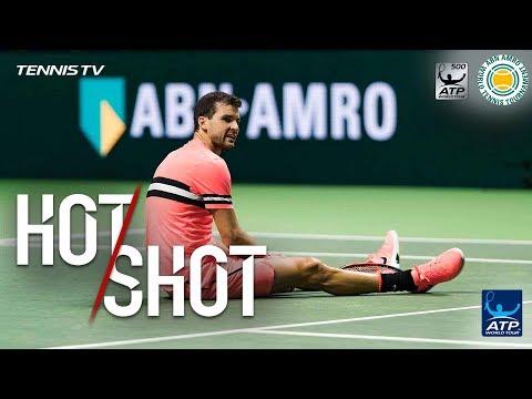 Sugita Floors Dimitrov For Rotterdam 2018 Hot Shot