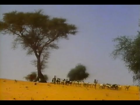 An African Recovery: Drought in the Sahel (Documentary ,1988, VHS)