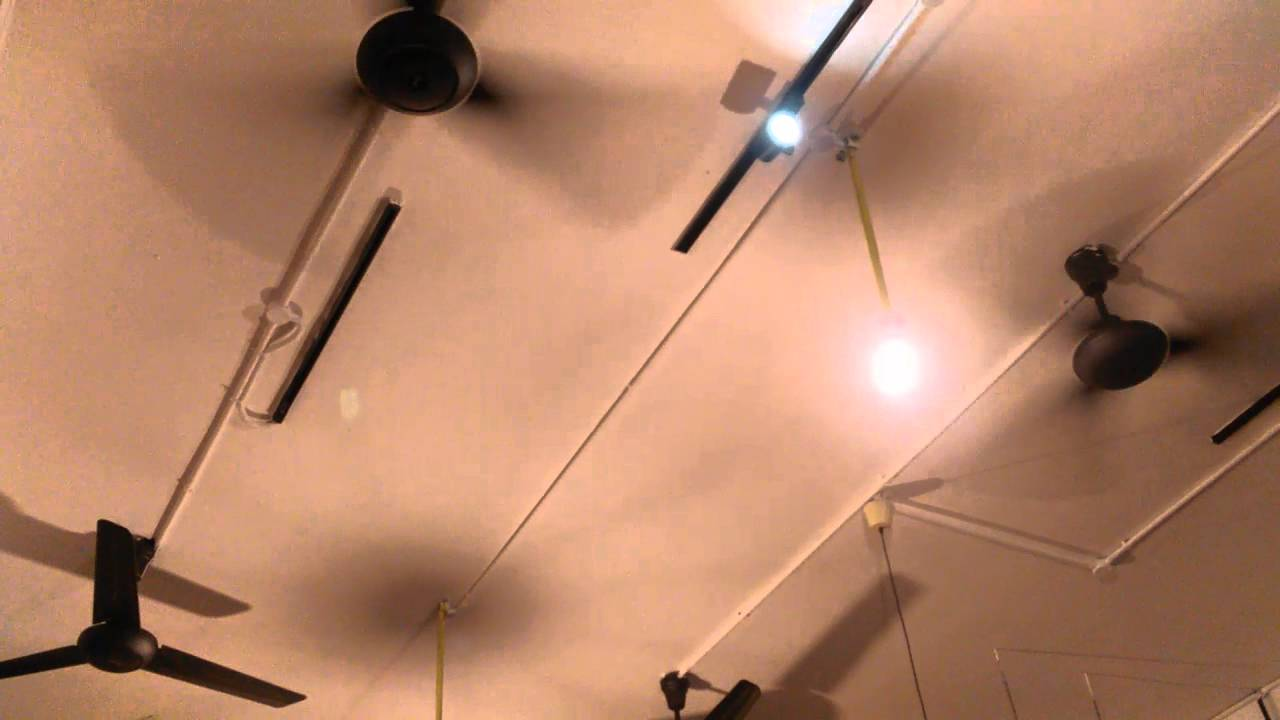 Alpha 218 3b Industrial Ceiling Fan In A Same Restaurant Outside Part One