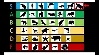 Are all amphibians low tier? [SECRET TOP TIER]