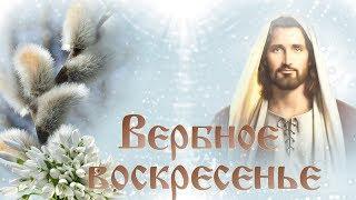 Поздравление с Вербным воскресеньем. Красивая видео открытка