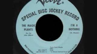 The Magic Plants I'm A Nothing 1966