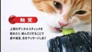 日本GEX貓玩具cat it(貓咪理容修甲按摩中心)/寵物益智玩具/貓抗憂/貓用玩具