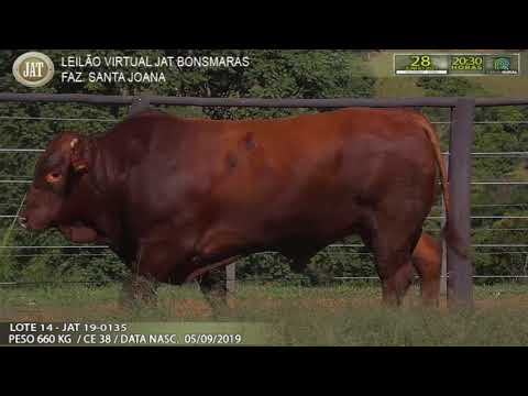 LOTE 014