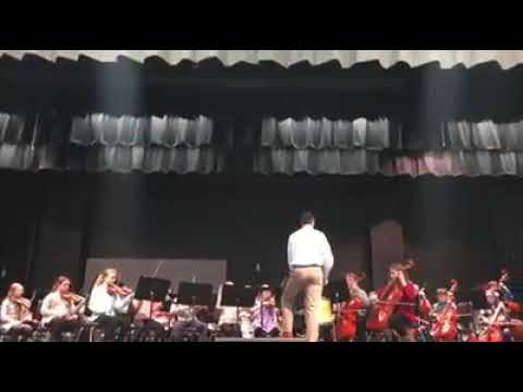 Instinct-Wallingford Elementary School Orchestra