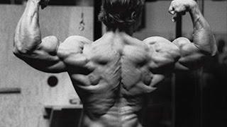 Arnold Schwarzenegger's Full Back Workout For Relentless Size
