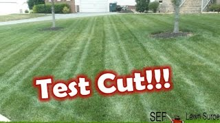 "Cheap Striping Kit - ""test Cut And Review"""