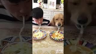 Кто быстрее ест?