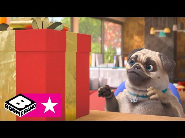 Pacchi regalo | Boom compilation | Boomerang Italia