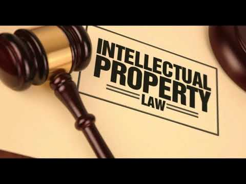 Intellectual Property Rights (Case law example)