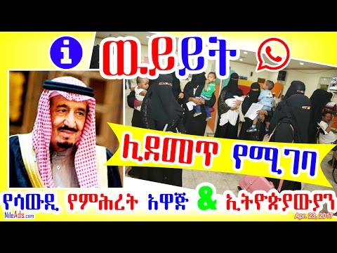 ዉይይት: የሳውዲ የምሕረት አዋጅ እና ኢትዮጵያውያን - discussion Ethiopian in Saudi - DW