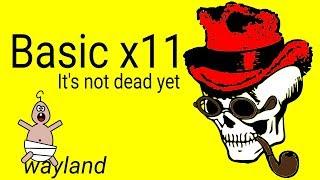 Basic x11 (Linux GUI)...