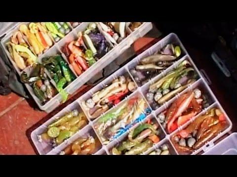 Ловля Щуки: особенности осеннего троллинга. О Рыбалке Всерьез видео 64.