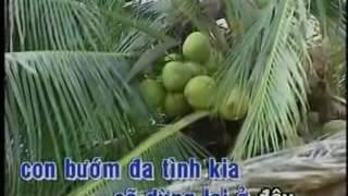 Nguoi tinh va que huong Tuan Vu - Karaoke