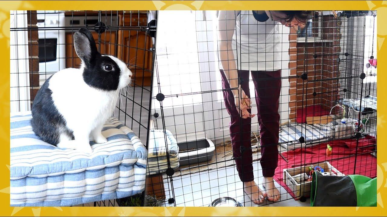 enclos modulable pour lapins avec jean jean