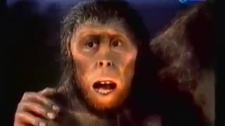Video Evolution Of Man Documentary Channel - Evolution The origin from apes to human download MP3, 3GP, MP4, WEBM, AVI, FLV November 2017