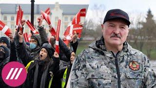 ФБК объявил дату большого митинга за Навального. «Покушение» на Лукашенко. Концерт в поддержку DOXA