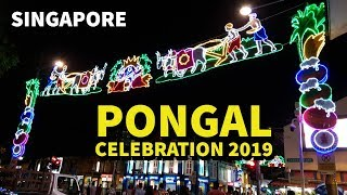 Pongal celebration  2019 @ Little India : Singapore