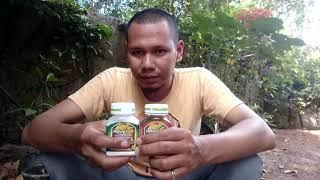 Video Unbox Nature Stek Formula Perangsang Akar Untuk Stek Batang Tanaman Buah Maupun Tanaman Hias download MP3, 3GP, MP4, WEBM, AVI, FLV September 2018