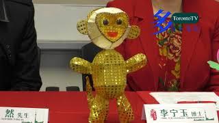 秦淮燈會, 20160209