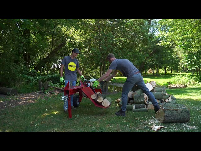 Cutting down and processing a maple tree: super fast and easy with Split-Fire machines.