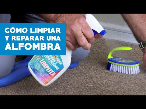 Aspiradora limpia lava tapizados alfombras puzzi 100 - Como lavar alfombras ...