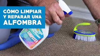 ¿Cómo limpiar y reparar una alfombra muro a muro?