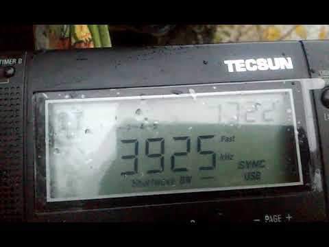 3925 kHz Radio Nikkei 1