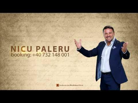 Nicu Paleru - Colaj muzica de petrecere 2017
