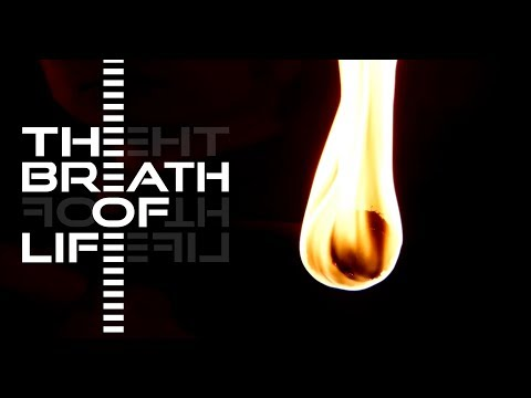 THE BREATH OF LIFE - HIDE (Official Video)