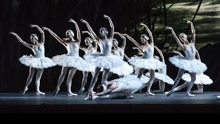 Darcey Bussell the challenges of dancing as a Swan (The Royal Ballet)