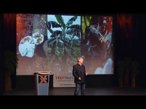 Pushing Boundaries in Agriculture | Rob Saik | TEDxRedDeer