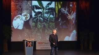 Pushing Boundaries in Agriculture | Rob Saik | TEDxRedDeer