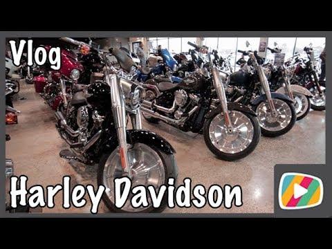 Comprei na Harley Davidson - DbTv #1007