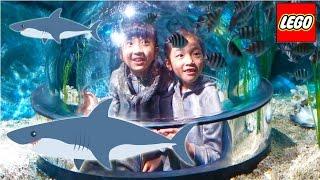 Kan & Aki サメがみれる潜水艦にのったよ!LEGOLAND