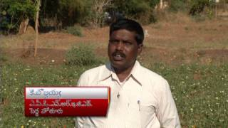 MGNREGS AP FARM PONDS  IN KURNOOL DISTRICT PEDAHOTHOOR MANDAL 23 03 2014