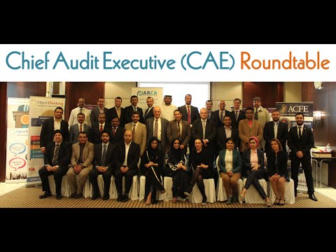 Chief Audit Executive (CAE) Roundtable