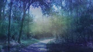 Tommy Embrich - Shawnee Falls