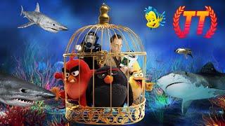 Трейлер Трейлеров 15.08 | Красивый Бандит | Синяя Бездна 2 | Angry Birds 2 | ТТ