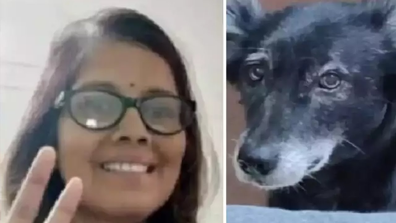Dog suicides caused by the death of a doctor mistress who died of kidney infection; Uttar Pradesh