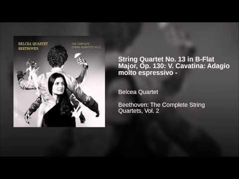 String Quartet No. 13 in B-Flat Major, Op. 130: V. Cavatina: Adagio molto espressivo -